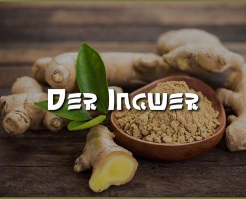 Ingwer-Nahrungsergaenzung-Ethno-Health-TCM-Superfood