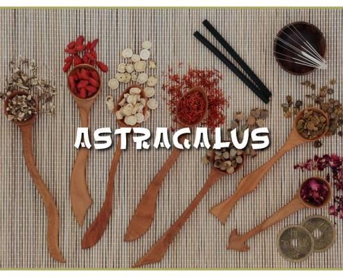 Astragalus-Tragant-Nahrungsergaenzung-Ethno-Health-TCM-Superfood-Facebook
